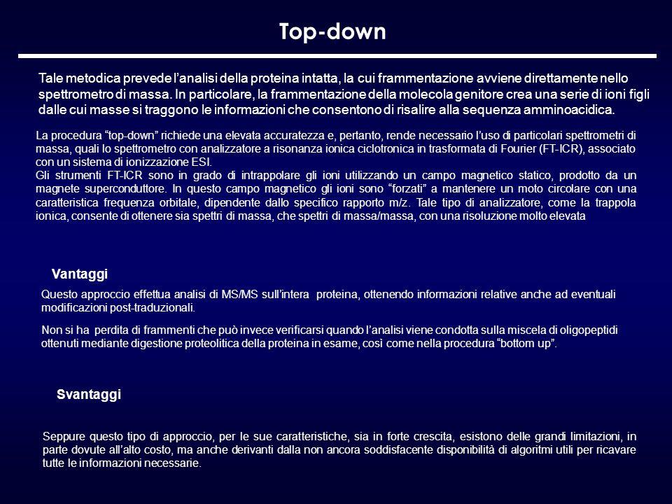 Top-down Seppure questo tipo di approccio, per le sue caratteristiche, sia in forte crescita, esistono delle grandi limitazioni, in parte dovute allal