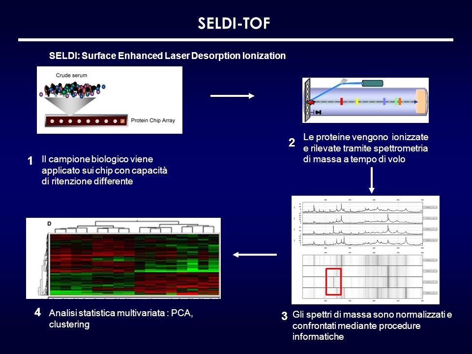 SELDI: Surface Enhanced Laser Desorption Ionization Le proteine vengono ionizzate e rilevate tramite spettrometria di massa a tempo di volo SELDI-TOF