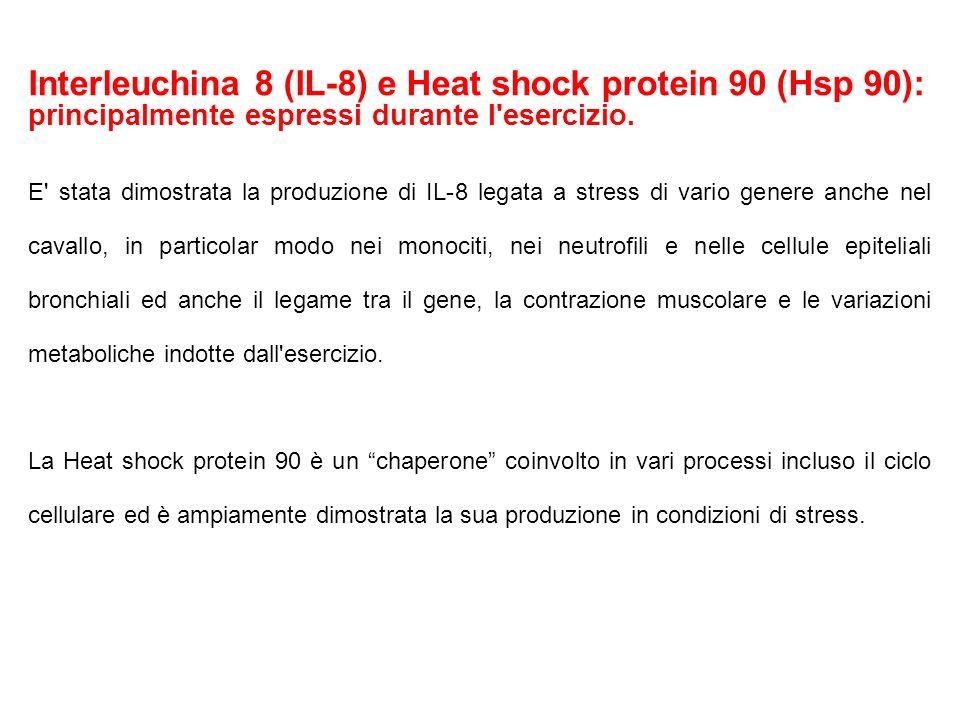 Interleuchina 8 (IL-8) e Heat shock protein 90 (Hsp 90): principalmente espressi durante l esercizio.