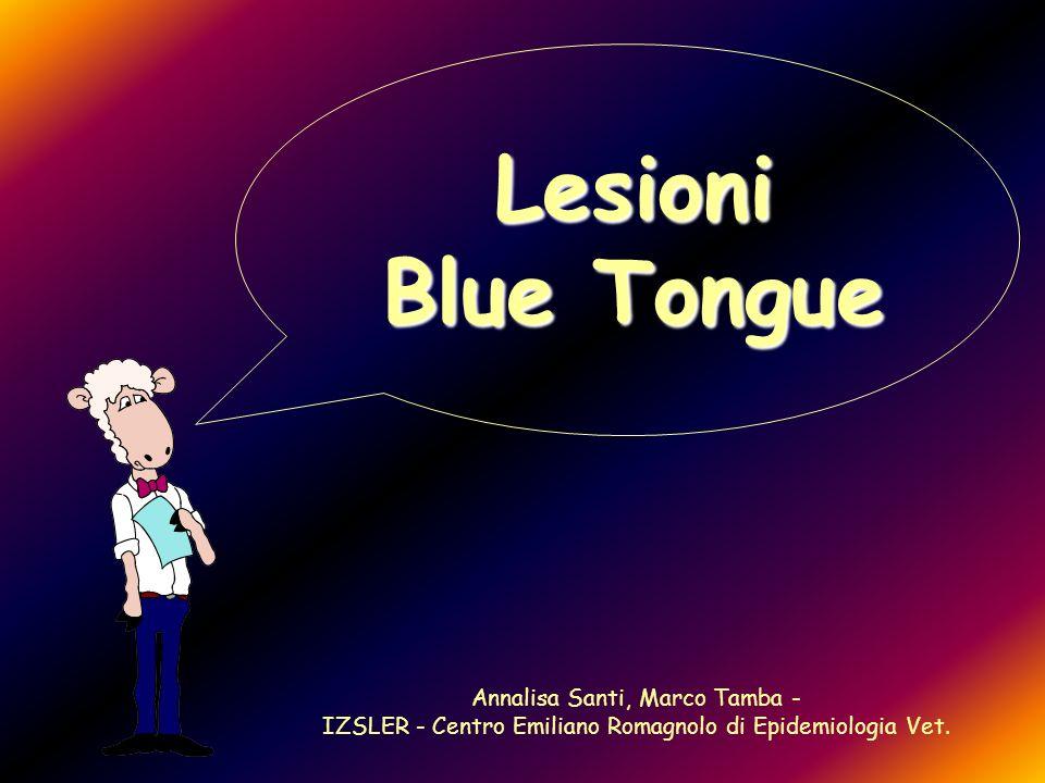Lesioni Blue Tongue Annalisa Santi, Marco Tamba - IZSLER - Centro Emiliano Romagnolo di Epidemiologia Vet.