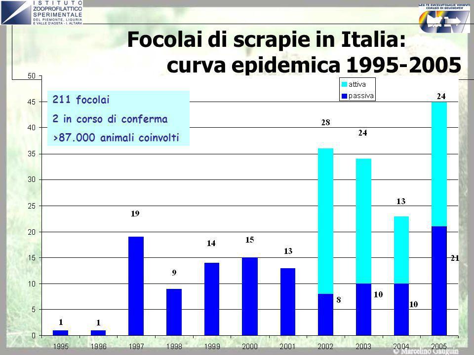 Focolai di scrapie in Italia: curva epidemica 1995-2005 211 focolai 2 in corso di conferma >87.000 animali coinvolti