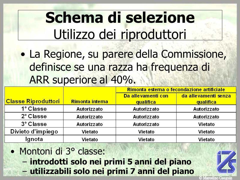 Schema di selezione Utilizzo dei riproduttori La Regione, su parere della Commissione, definisce se una razza ha frequenza di ARR superiore al 40%.