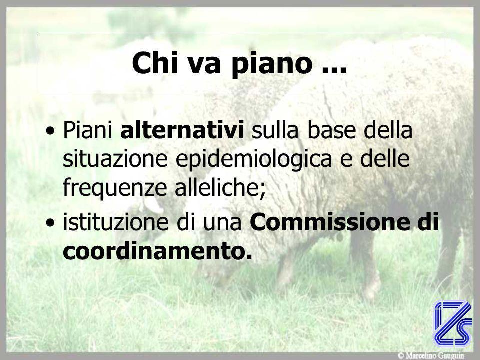 Piani alternativi sulla base della situazione epidemiologica e delle frequenze alleliche; istituzione di una Commissione di coordinamento.