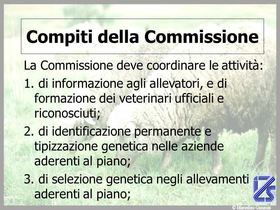 Compiti della Commissione La Commissione deve coordinare le attività: 1.