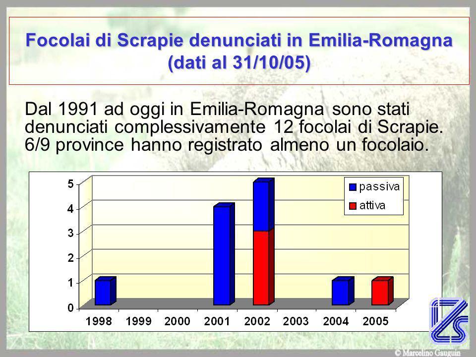 Focolai di Scrapie denunciati in Emilia-Romagna (dati al 31/10/05) Dal 1991 ad oggi in Emilia-Romagna sono stati denunciati complessivamente 12 focolai di Scrapie.