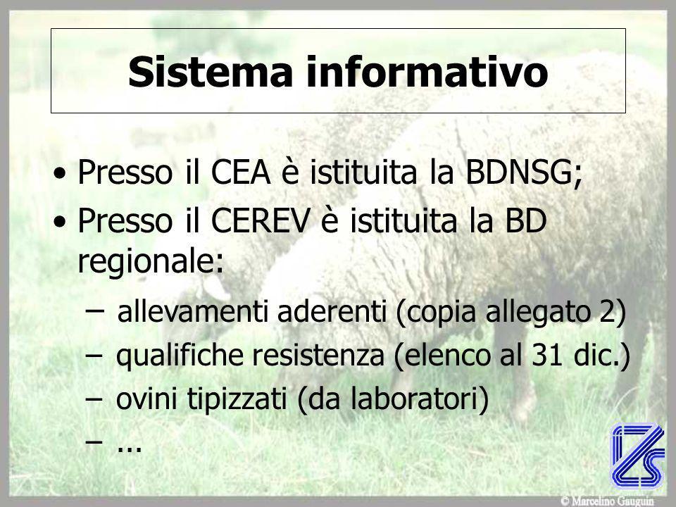 Sistema informativo Presso il CEA è istituita la BDNSG; Presso il CEREV è istituita la BD regionale: – allevamenti aderenti (copia allegato 2) – qualifiche resistenza (elenco al 31 dic.) – ovini tipizzati (da laboratori) –...