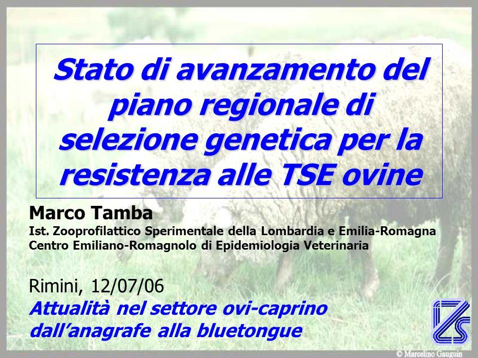 Stato di avanzamento del piano regionale di selezione genetica per la resistenza alle TSE ovine Marco Tamba Ist. Zooprofilattico Sperimentale della Lo