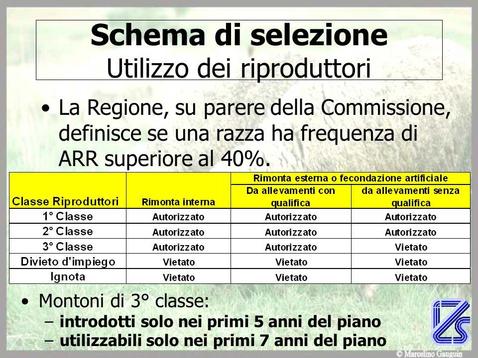 Schema di selezione Utilizzo dei riproduttori La Regione, su parere della Commissione, definisce se una razza ha frequenza di ARR superiore al 40%. Mo