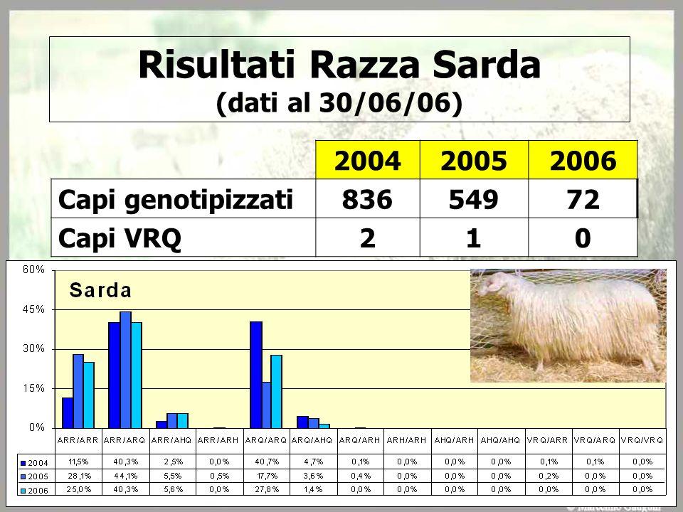 Risultati Razza Sarda (dati al 30/06/06) 200420052006 Capi genotipizzati 83654972 Capi VRQ 210