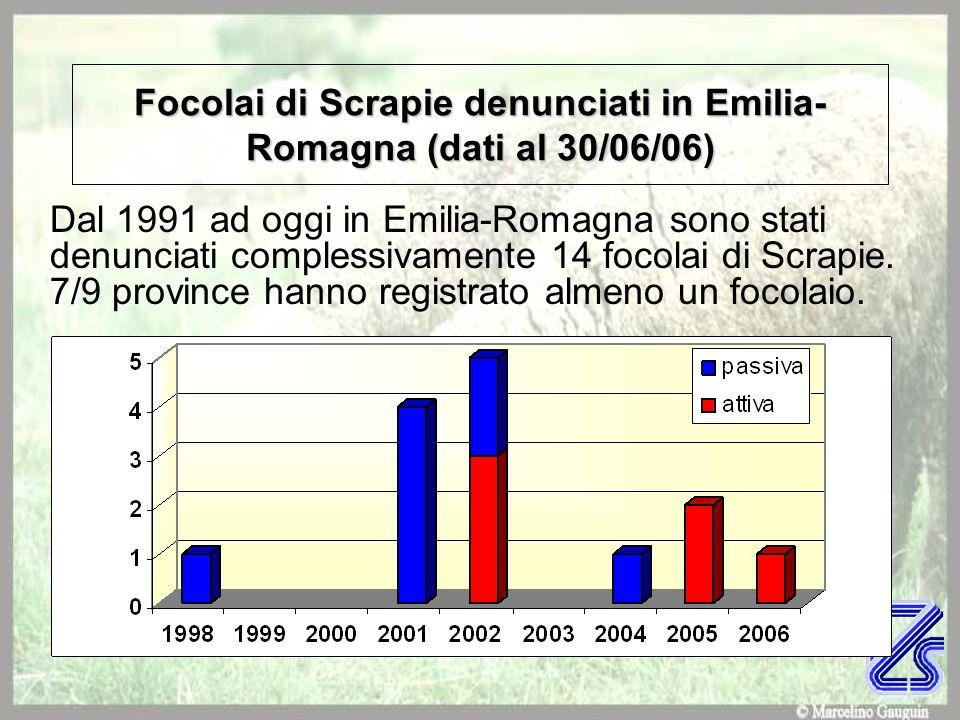 Focolai di Scrapie denunciati in Emilia- Romagna (dati al 30/06/06) Dal 1991 ad oggi in Emilia-Romagna sono stati denunciati complessivamente 14 focol