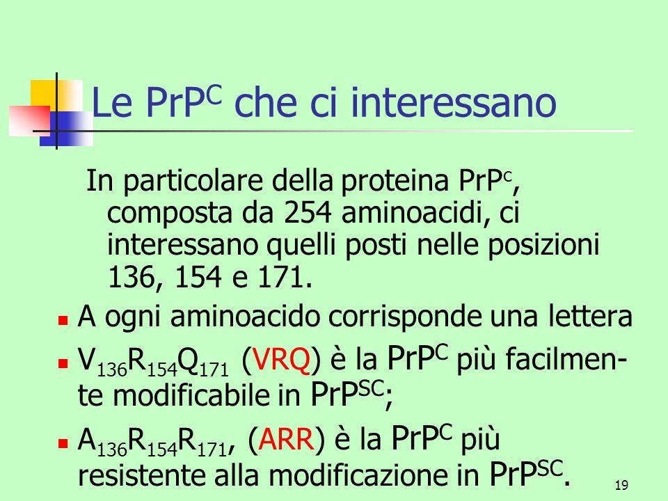 19 Le PrP C che ci interessano In particolare della proteina PrP c, composta da 254 aminoacidi, ci interessano quelli posti nelle posizioni 136, 154 e