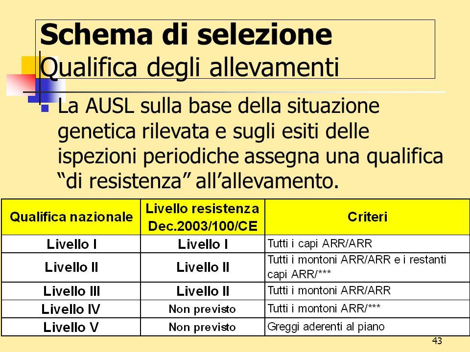 43 Schema di selezione Qualifica degli allevamenti La AUSL sulla base della situazione genetica rilevata e sugli esiti delle ispezioni periodiche asse