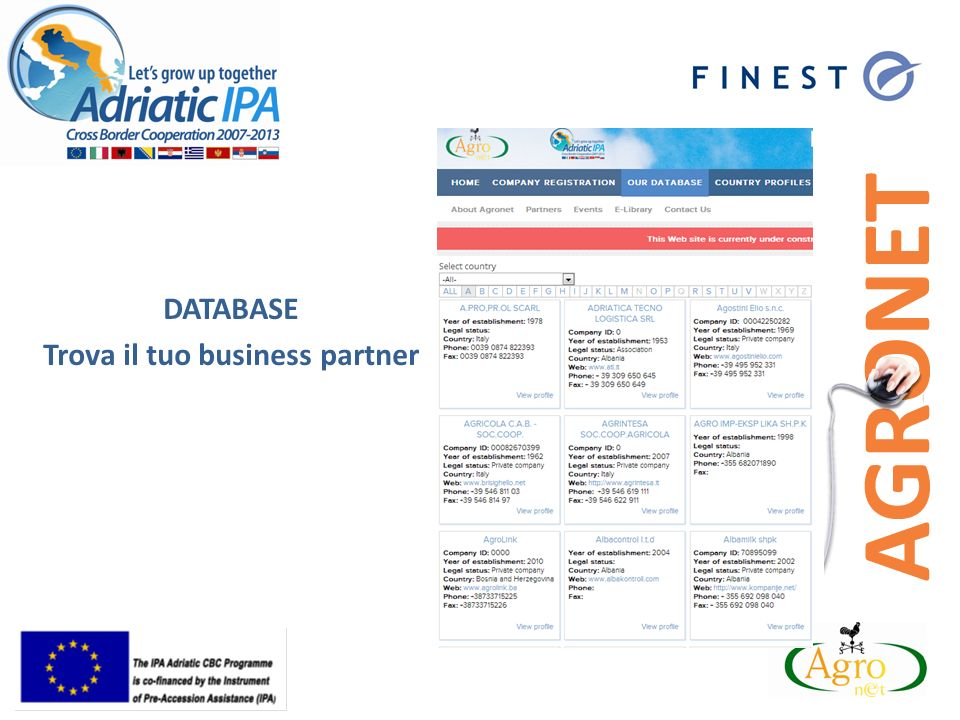 DATABASE Trova il tuo business partner