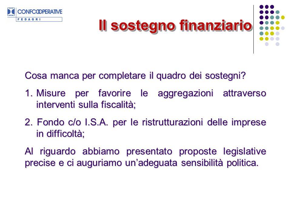 Il sostegno finanziario Cosa manca per completare il quadro dei sostegni.