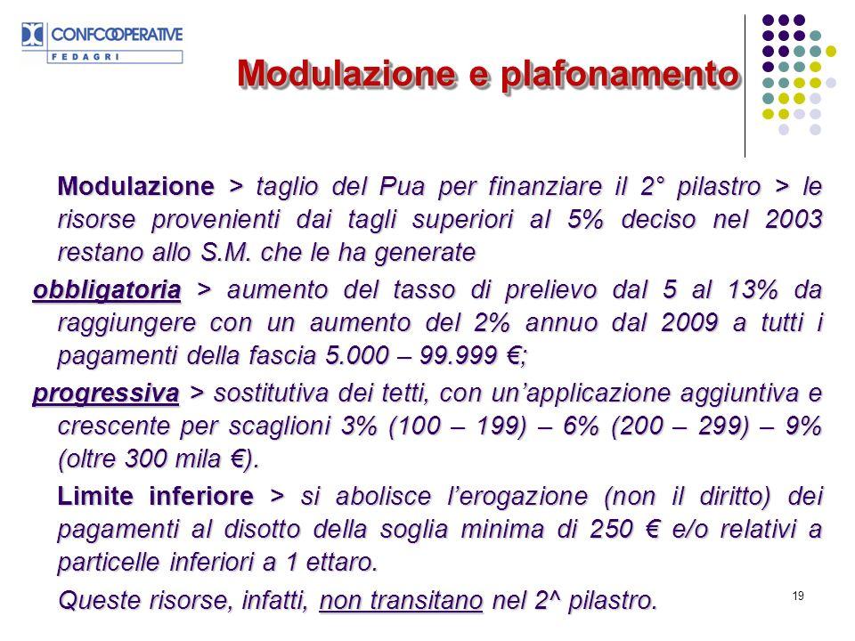 19 Modulazione > taglio del Pua per finanziare il 2° pilastro > le risorse provenienti dai tagli superiori al 5% deciso nel 2003 restano allo S.M.