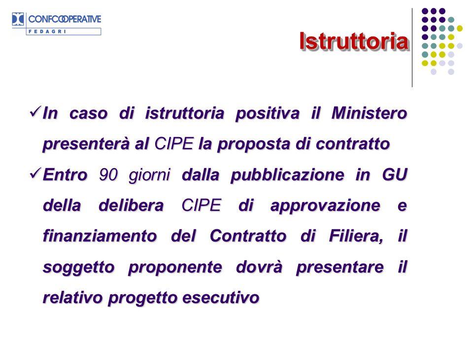IstruttoriaIstruttoria In caso di istruttoria positiva il Ministero presenterà al CIPE la proposta di contratto In caso di istruttoria positiva il Min