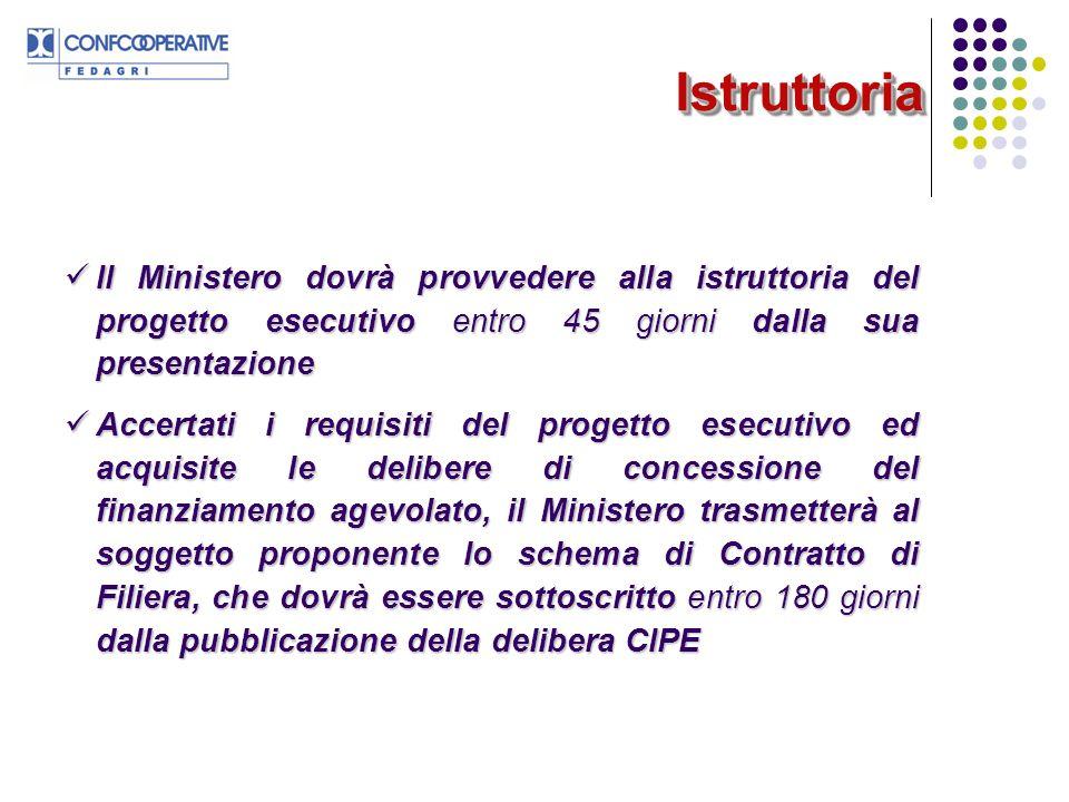 IstruttoriaIstruttoria Il Ministero dovrà provvedere alla istruttoria del progetto esecutivo entro 45 giorni dalla sua presentazione Il Ministero dovr