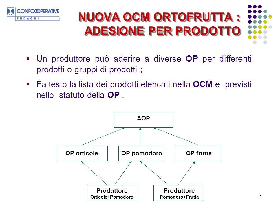 5 Un produttore può aderire a diverse OP per differenti prodotti o gruppi di prodotti ; Fa testo la lista dei prodotti elencati nella OCM e previsti nello statuto della OP.