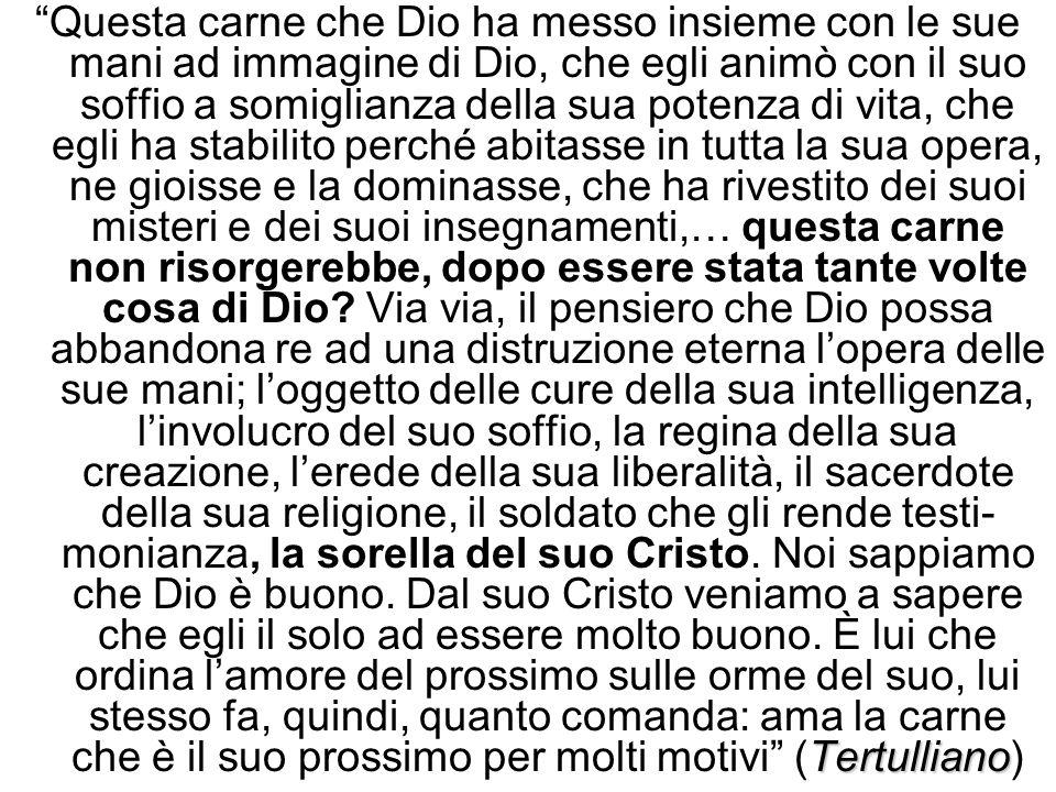 Tertulliano Questa carne che Dio ha messo insieme con le sue mani ad immagine di Dio, che egli animò con il suo soffio a somiglianza della sua potenza