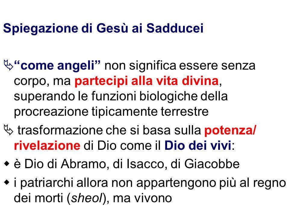 Spiegazione di Gesù ai Sadducei come angeli non significa essere senza corpo, ma partecipi alla vita divina, superando le funzioni biologiche della pr