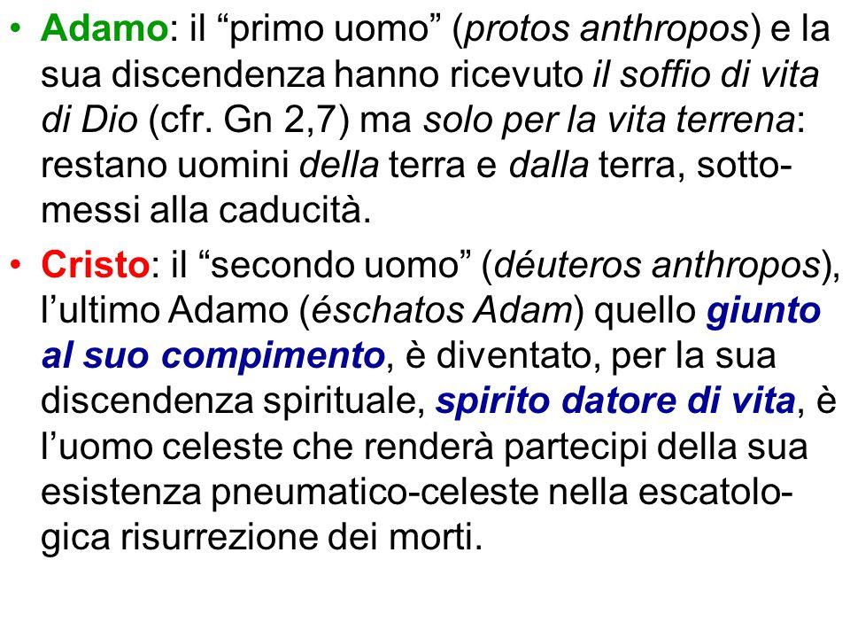 Adamo: il primo uomo (protos anthropos) e la sua discendenza hanno ricevuto il soffio di vita di Dio (cfr. Gn 2,7) ma solo per la vita terrena: restan