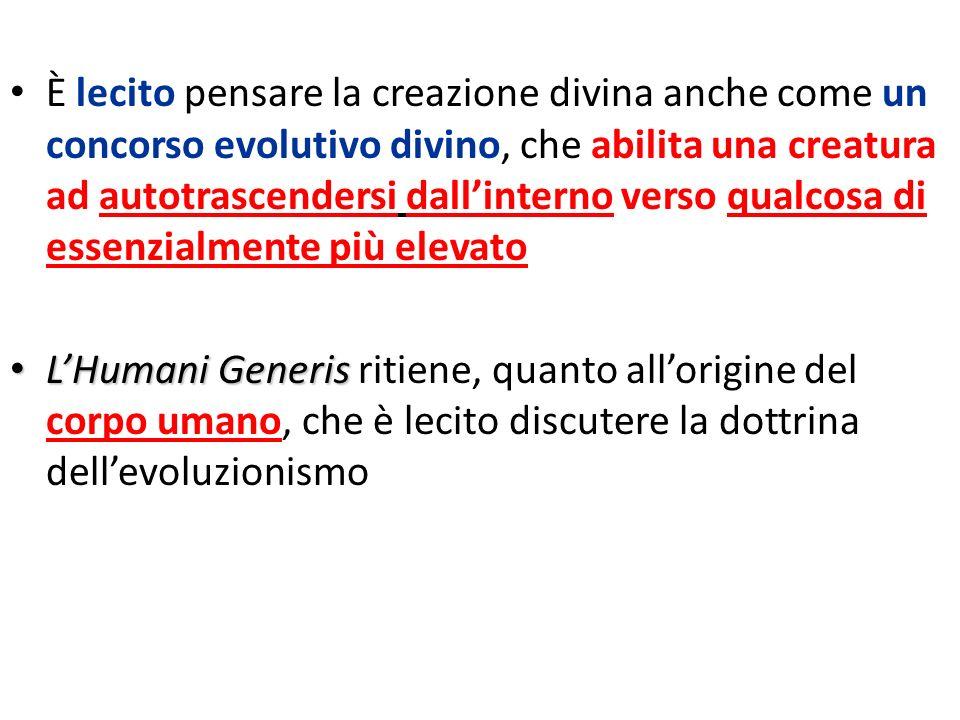 È lecito pensare la creazione divina anche come un concorso evolutivo divino, che abilita una creatura ad autotrascendersi dallinterno verso qualcosa