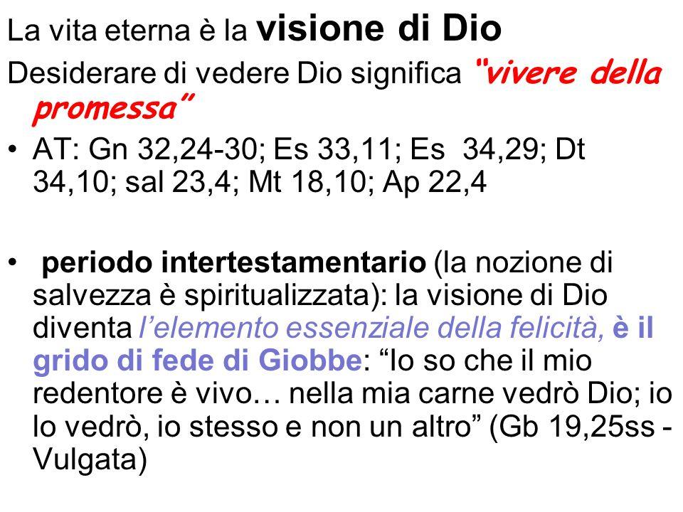 La vita eterna è la visione di Dio Desiderare di vedere Dio significa vivere della promessa AT: Gn 32,24-30; Es 33,11; Es 34,29; Dt 34,10; sal 23,4; M