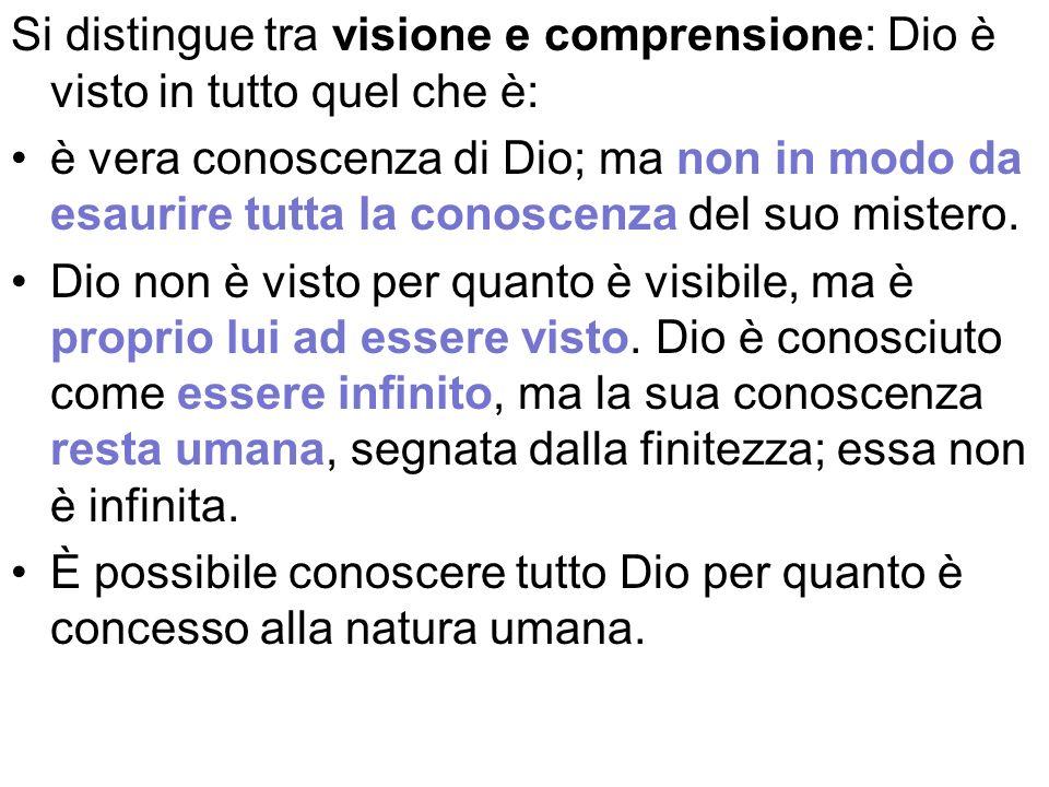 Si distingue tra visione e comprensione: Dio è visto in tutto quel che è: è vera conoscenza di Dio; ma non in modo da esaurire tutta la conoscenza del