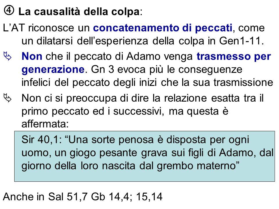 La causalità della colpa: LAT riconosce un concatenamento di peccati, come un dilatarsi dellesperienza della colpa in Gen1-11. Non che il peccato di A