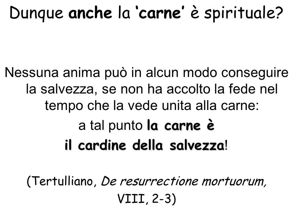 Dunque anche la carne è spirituale? Nessuna anima può in alcun modo conseguire la salvezza, se non ha accolto la fede nel tempo che la vede unita alla