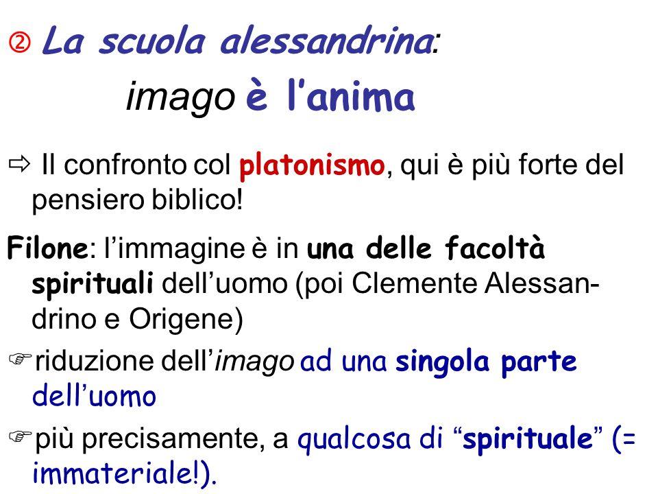 La scuola alessandrina : imago è lanima Il confronto col platonismo, qui è più forte del pensiero biblico! Filone : limmagine è in una delle facoltà s