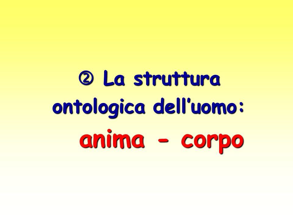 La struttura La struttura ontologica delluomo: anima - corpo anima - corpo