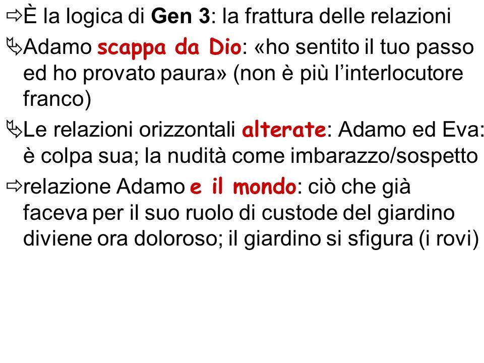 È la logica di Gen 3: la frattura delle relazioni Adamo scappa da Dio : «ho sentito il tuo passo ed ho provato paura» (non è più linterlocutore franco