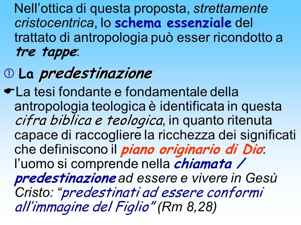 Nellottica di questa proposta, strettamente cristocentrica, lo schema essenziale del trattato di antropologia può esser ricondotto a tre tappe : prede