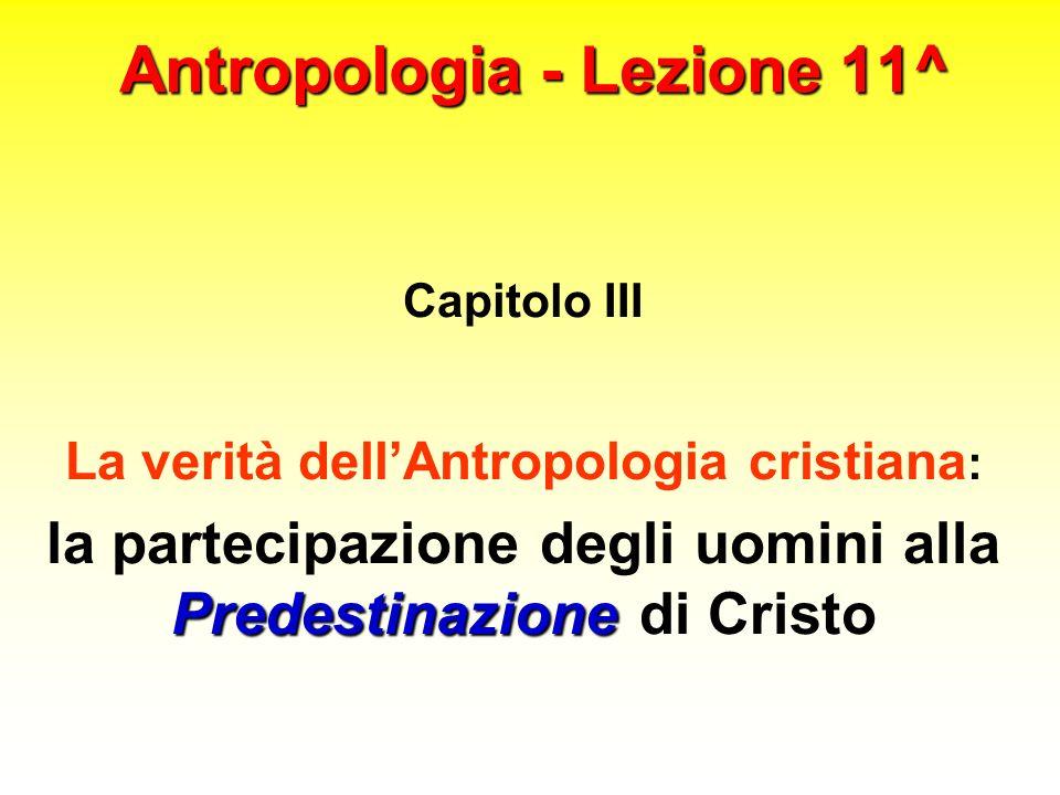 Antropologia - Lezione 11^ Capitolo III La verità dellAntropologia cristiana : Predestinazione la partecipazione degli uomini alla Predestinazione di