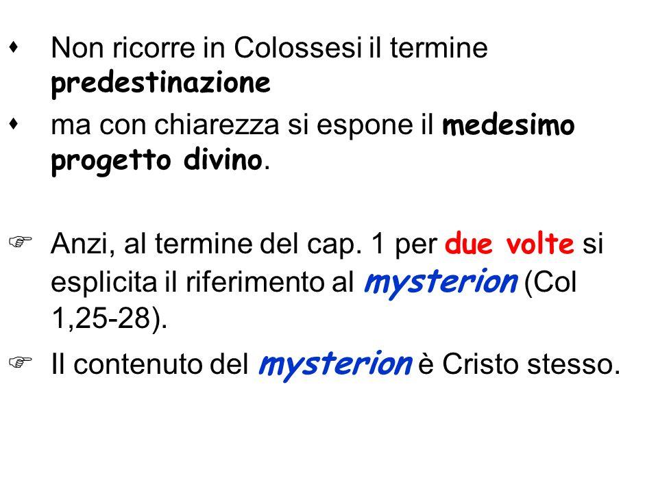 Non ricorre in Colossesi il termine predestinazione ma con chiarezza si espone il medesimo progetto divino. Anzi, al termine del cap. 1 per due volte