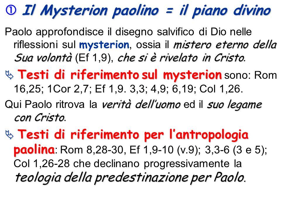 Il Mysterion paolino = il piano divino Il Mysterion paolino = il piano divino mistero eterno della Sua volontàche si è rivelato in Cristo Paolo approf