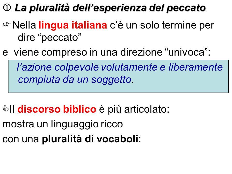La pluralità dellesperienza del peccato La pluralità dellesperienza del peccato Nella lingua italiana cè un solo termine per dire peccato e viene comp