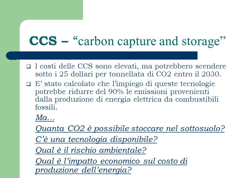 CCS – carbon capture and storage I costi delle CCS sono elevati, ma potrebbero scendere sotto i 25 dollari per tonnellata di CO2 entro il 2030. E stat