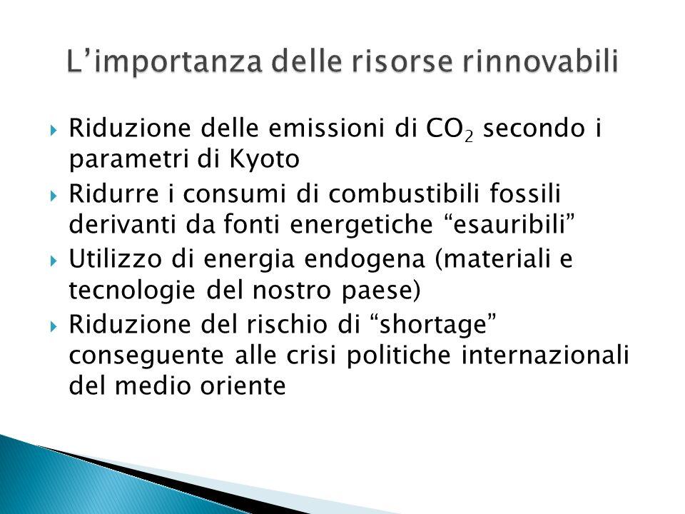 Riduzione delle emissioni di CO 2 secondo i parametri di Kyoto Ridurre i consumi di combustibili fossili derivanti da fonti energetiche esauribili Uti
