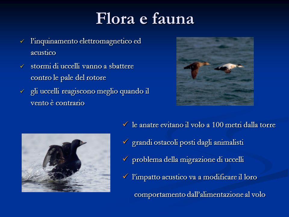 Flora e fauna linquinamento elettromagnetico ed acustico linquinamento elettromagnetico ed acustico stormi di uccelli vanno a sbattere contro le pale