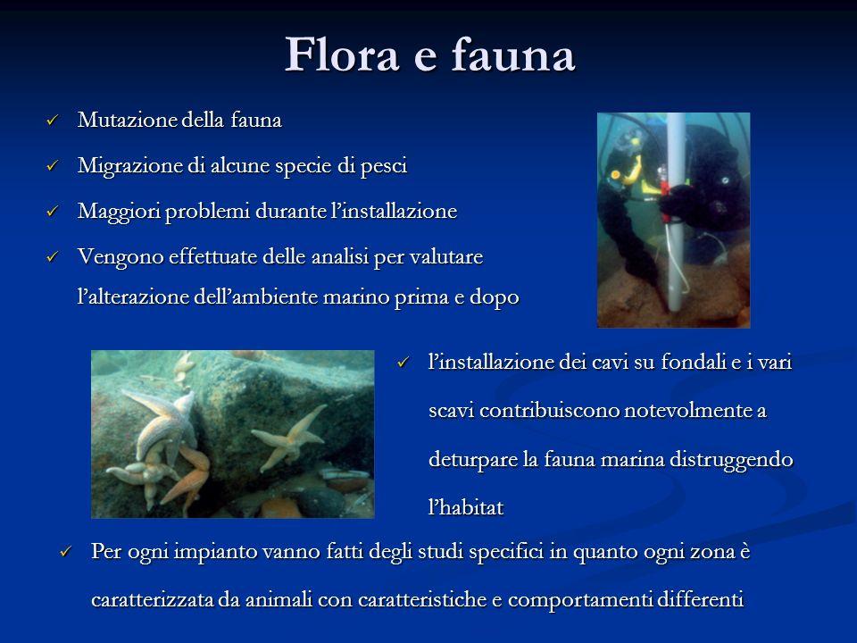 Flora e fauna Mutazione della fauna Mutazione della fauna Migrazione di alcune specie di pesci Migrazione di alcune specie di pesci Maggiori problemi