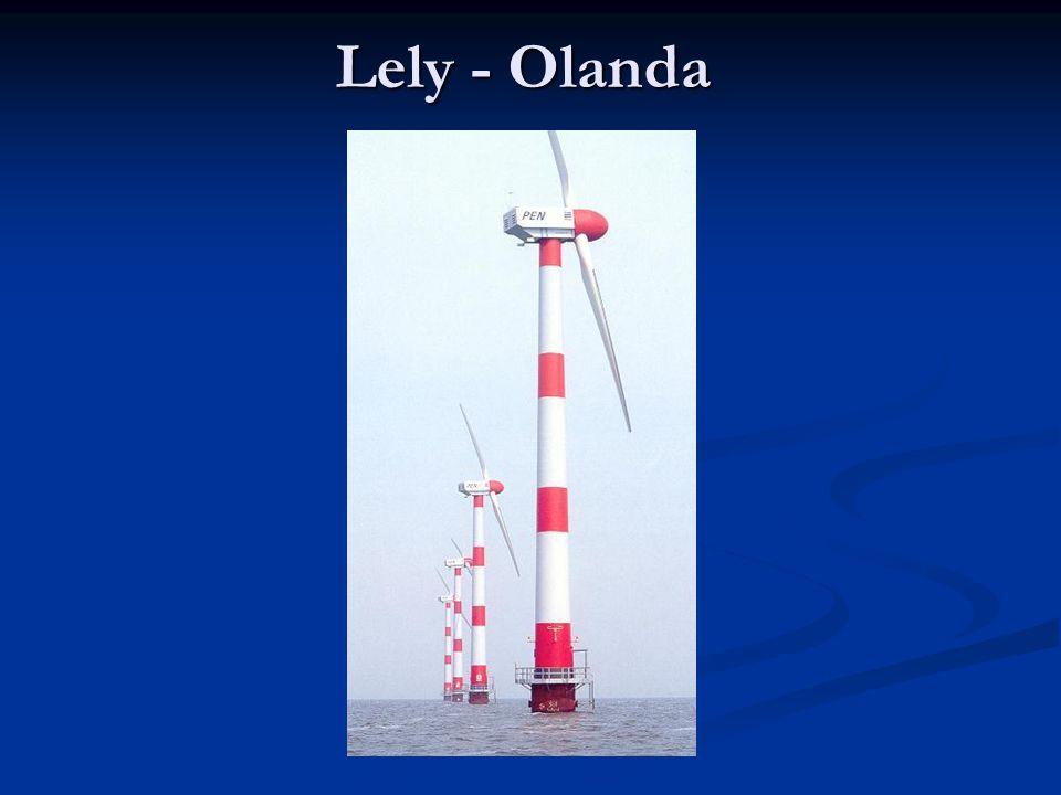 Lely - Olanda