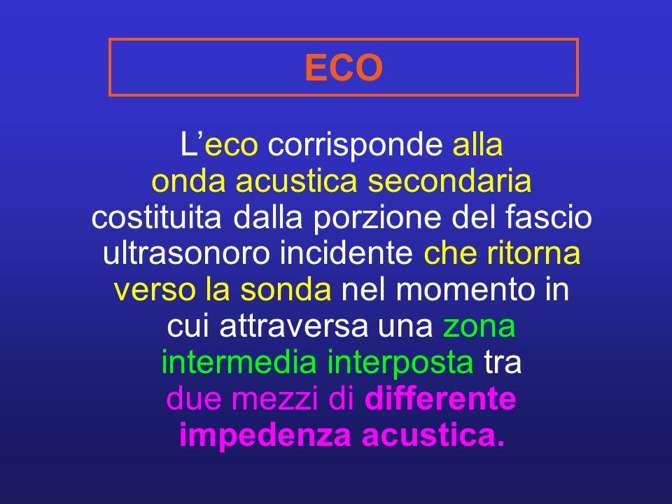 ECO Leco corrisponde alla onda acustica secondaria costituita dalla porzione del fascio ultrasonoro incidente che ritorna verso la sonda nel momento in cui attraversa una zona intermedia interposta tra due mezzi di differente impedenza acustica.