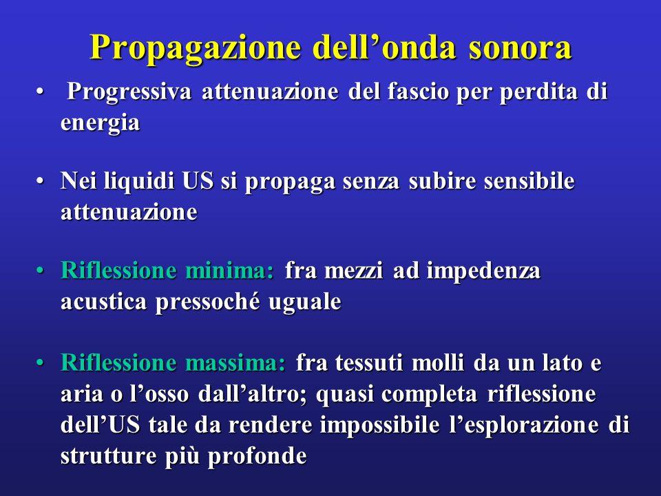 Propagazione dellonda sonora Progressiva attenuazione del fascio per perdita di energia Progressiva attenuazione del fascio per perdita di energia Nei