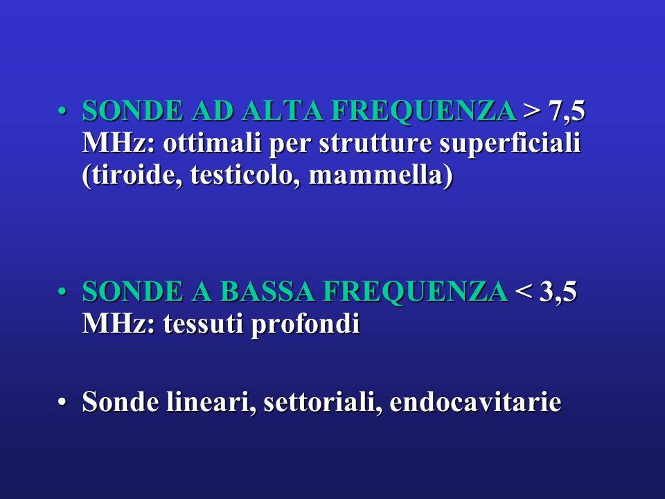SONDE AD ALTA FREQUENZA > 7,5 MHz: ottimali per strutture superficiali (tiroide, testicolo, mammella)SONDE AD ALTA FREQUENZA > 7,5 MHz: ottimali per s