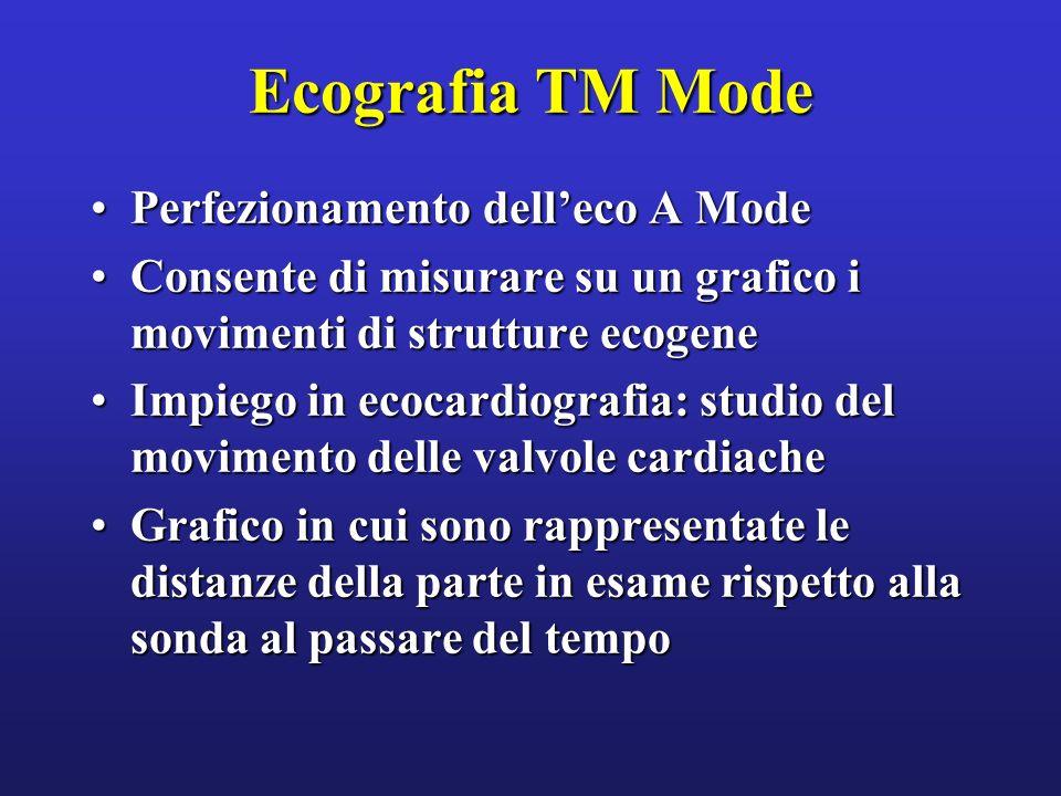 Ecografia TM Mode Perfezionamento delleco A ModePerfezionamento delleco A Mode Consente di misurare su un grafico i movimenti di strutture ecogeneCons