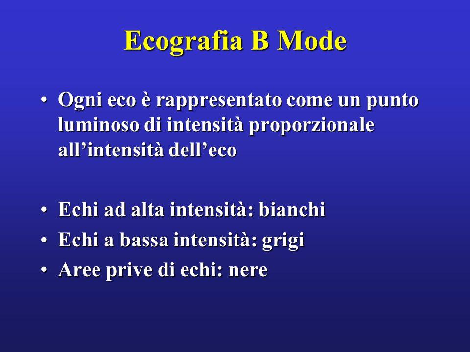 Ecografia B Mode Ogni eco è rappresentato come un punto luminoso di intensità proporzionale allintensità dellecoOgni eco è rappresentato come un punto