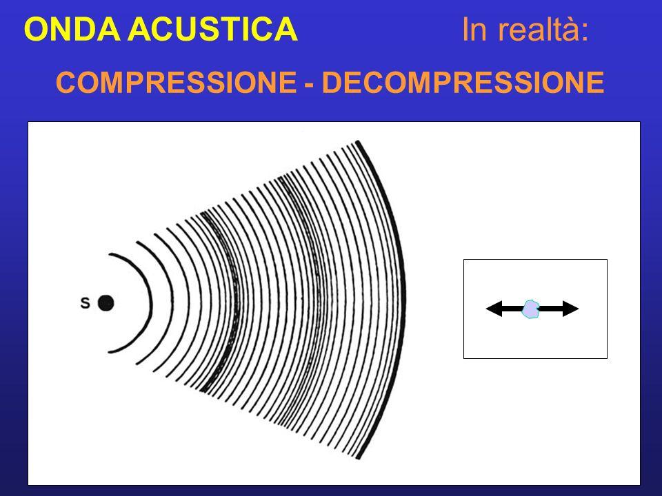 LA SONDA o TRASDUTTORE Contiene un cristallo piezoelettrico che, messo in vibrazione ad altissima frequenza quando eccitato da un impulso elettrico, produce gli US ed è in grado di ricevere le onde di ritorno.
