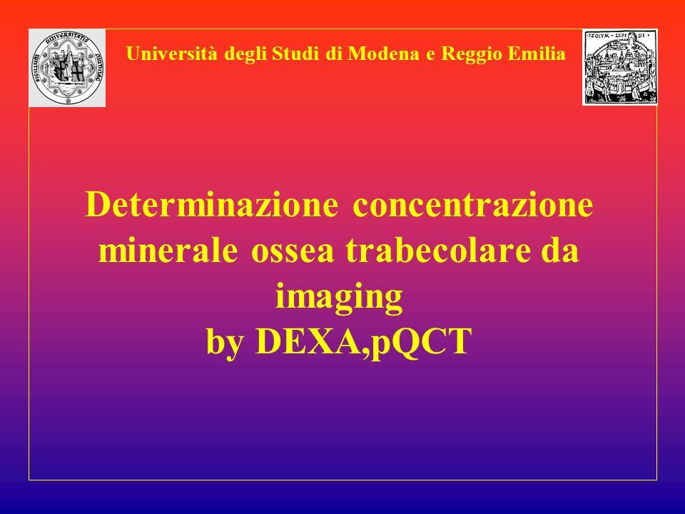 Determinazione concentrazione minerale ossea trabecolare da imaging by DEXA,pQCT Università degli Studi di Modena e Reggio Emilia